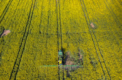 Tractor spraying on the rape field Stock Photography