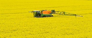 Tractor spraying rape field Stock Images
