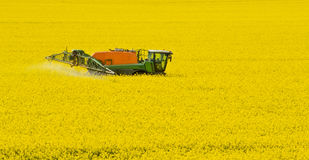 Tractor spraying rape field Stock Photography