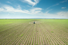 Tractor spraying soy Stock Photos