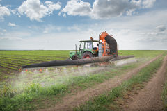 Tractor spraying soy. In the spring Royalty Free Stock Image