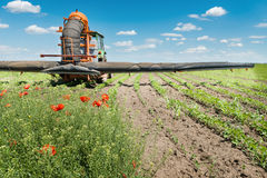 Tractor spraying soybean. Tractor spraying soy in the spring Stock Photo