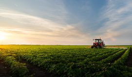 Free Tractor Spraying Soybean Field Stock Photography - 159525442