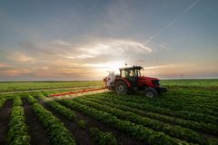 Free Tractor Spraying Soybean Field Royalty Free Stock Photo - 159525485
