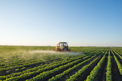 Tractor spraying Royalty Free Stock Images