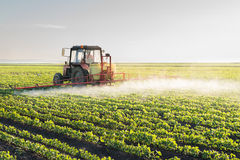 Tractor spraying soybean Royalty Free Stock Photography