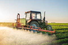 Tractor spraying soybean Stock Photography