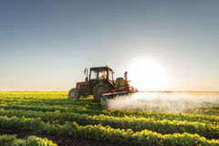 Tractor spraying soybean Royalty Free Stock Photos