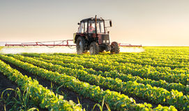 Tractor spraying soybean Royalty Free Stock Photo