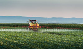 Tractor spraying vegetable field at spring royalty free stock photos