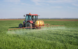 Tractor spraying wheat field. With sprayer Royalty Free Stock Images