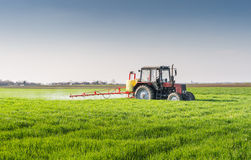 Tractor spraying wheat field. With sprayer Stock Image