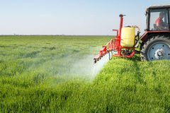Tractor spraying wheat field royalty free stock photography