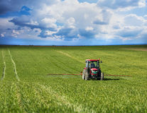 Tractor spraying wheat field. With sprayer, herbicides and pesticides Royalty Free Stock Photo