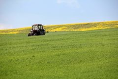 Tractor spraying wheat field in springtime. Herbicides and pesticides stock images