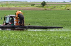 Tractor spraying wheat in field royalty free stock photography