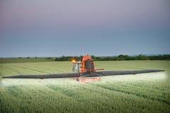 Tractor spraying wheat Stock Image