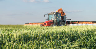 Tractor spraying wheat Stock Image