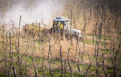 Tractor sprays insecticide in apple orchard Stock Photography