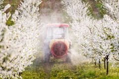 Tractor sprays insecticide in apple orchard field Stock Photography