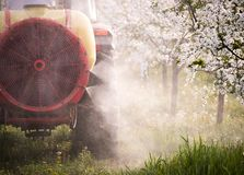 Tractor sprays insecticide in apple orchard field Royalty Free Stock Images