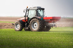 Tractor spreading artificial fertilizers. In field Stock Photography
