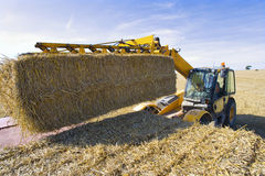 Tractor stacking straw bales on trailer in sunny, rural field Royalty Free Stock Photography