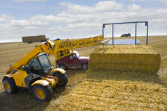 Tractor stacking straw bales on trailer in sunny rural field Royalty Free Stock Photos