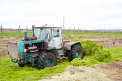 Tractor stores up silage Stock Photography