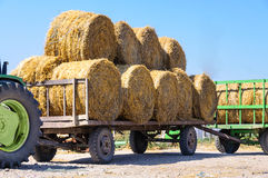 Tractor at straw harvesting Stock Image