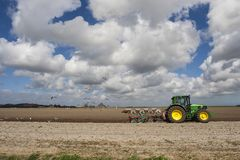 Tractor at Texel. Gulls foraging on farmland behind tractor in spring royalty free stock image