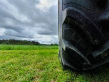 Tractor tire on green farmer field.  royalty free stock image