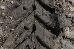 Tractor Tire Tracks in Mud royalty free stock images