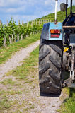 Tractor tire in vineyards Royalty Free Stock Image