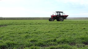 Tractor topdressing wheat stock video