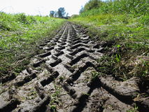 Tractor trace in muddy soil Royalty Free Stock Photo