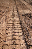 Tractor track on sandy soil Stock Image