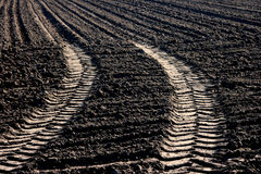 Tractor tracks  Stock Image