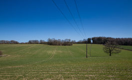 Tractor Tracks In Field Royalty Free Stock Images