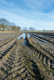 Tractor tracks and puddles in muddy Belgian farmland. Wet Belgian farmland with tire tracks in the foreground and the edge of a small village in the background Stock Images