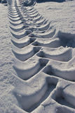 Tractor tracks in the snow. A lond and deep tractor tracks just done in the snow with all the clear lines of the tire Royalty Free Stock Photography