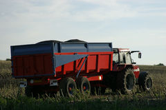 Tractor and Trailer. Harvesting crop Stock Photo