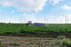 A tractor with a trailer rides through the field on the background of wind turbines. A tractor with a trailer rides through the field on the background of wind stock photos