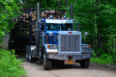 Tractor trailer truck hauling logs Stock Photos