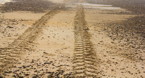 Tractor trails on sand Royalty Free Stock Image