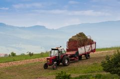 Tractor transporting the gathered grass stock photography