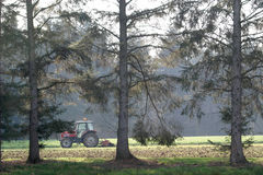 Tractor between the trees. A farmer in a tractor is fertilizing his farmland Royalty Free Stock Image