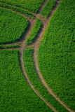 Tractor tyre track Stock Photos