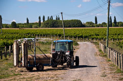 Tractor on Vineyard Stock Image