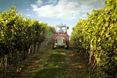 Tractor in the vineyard Stock Photography